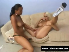 zebragirls - ebon lesbo hotties fuck unfathomable